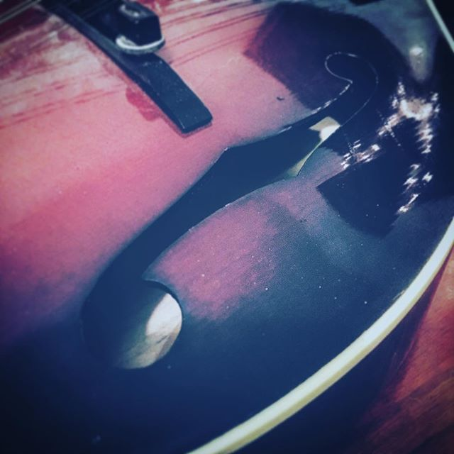 Working on the musical wonder of the week. #mandolin #music