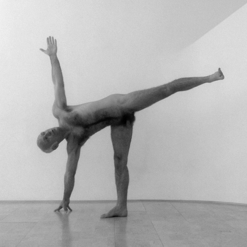 NS_naked_yoga_halfmoon.png