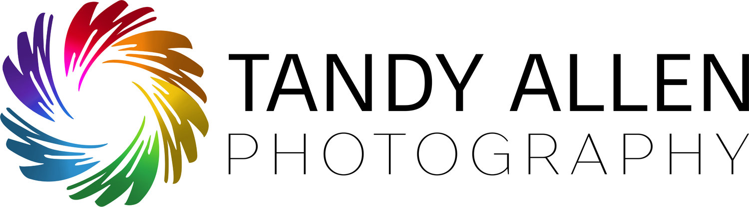 Tandy Allen Photography