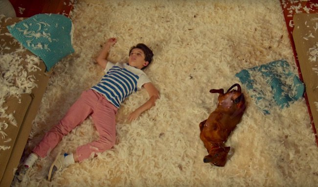 Still from WIENER-DOG by Todd Solondz