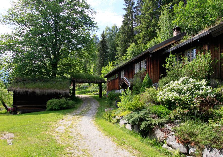 Norwegian-sommer.jpg