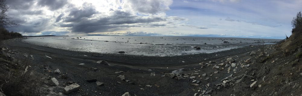 Cook Inlet at low tide from Captain Cook State Park