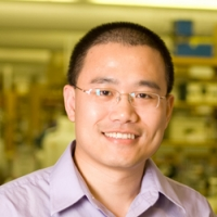 Yibin Kang, PhD, Warner-Lambert Parke-Davis, Professor of Molecular Biology Princeton University