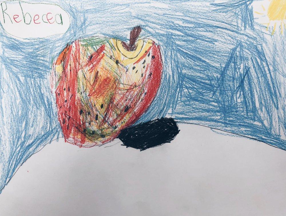 Still Life - 1st Grade