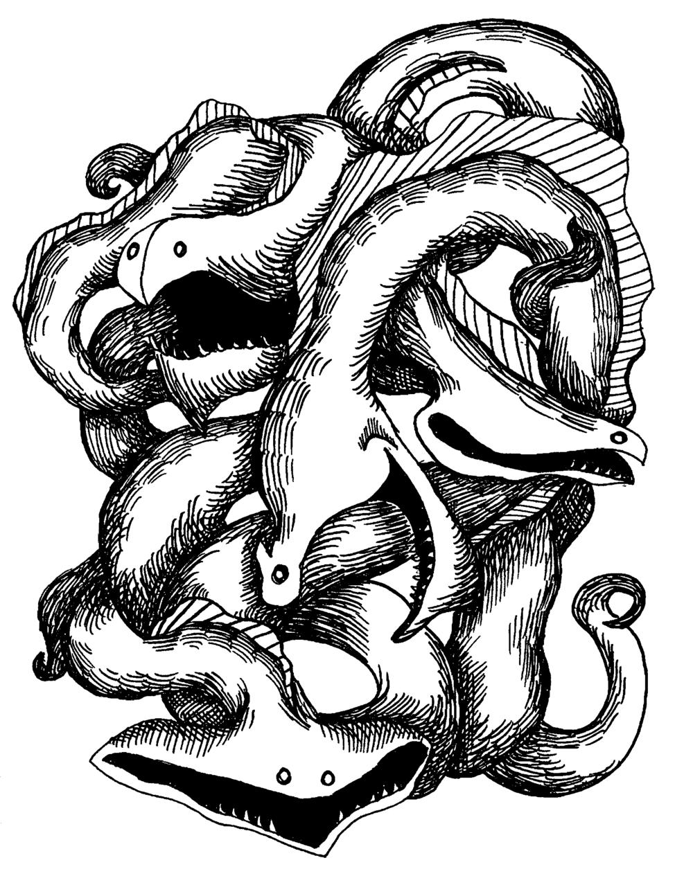 Gulper Eels