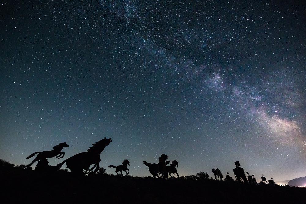 horseway_matthewtorrie_1800px.jpg