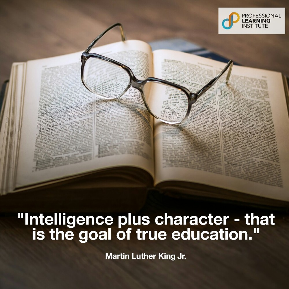 Martin Luther King Jr - NST Support by Professional Learning Institute