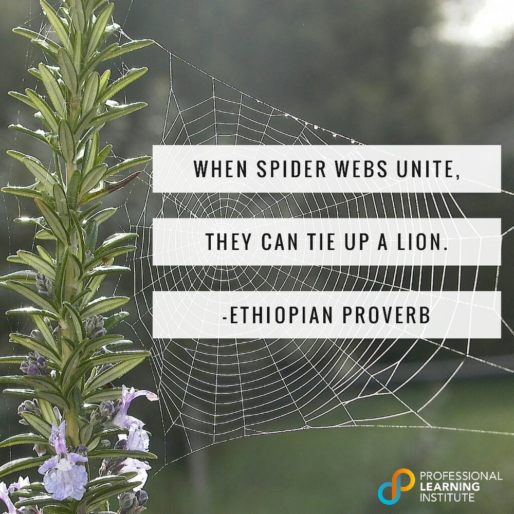 Ethiopian Proverb - NST Support by Professional Learning Institute