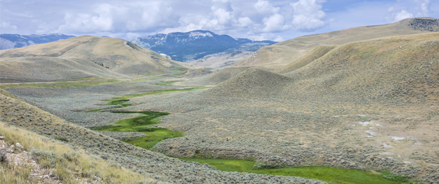 Montana Sagebrush landscape, credit to NFWF.