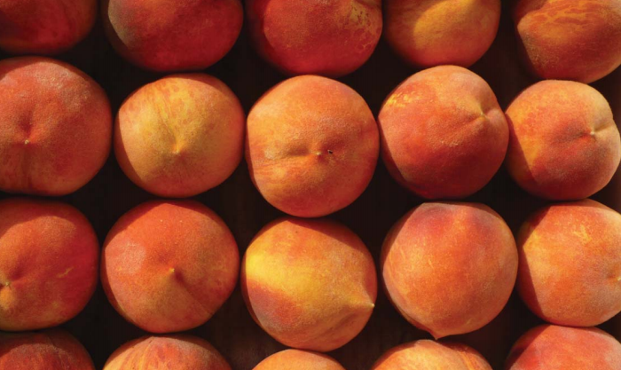 CCLT Peaches.PNG