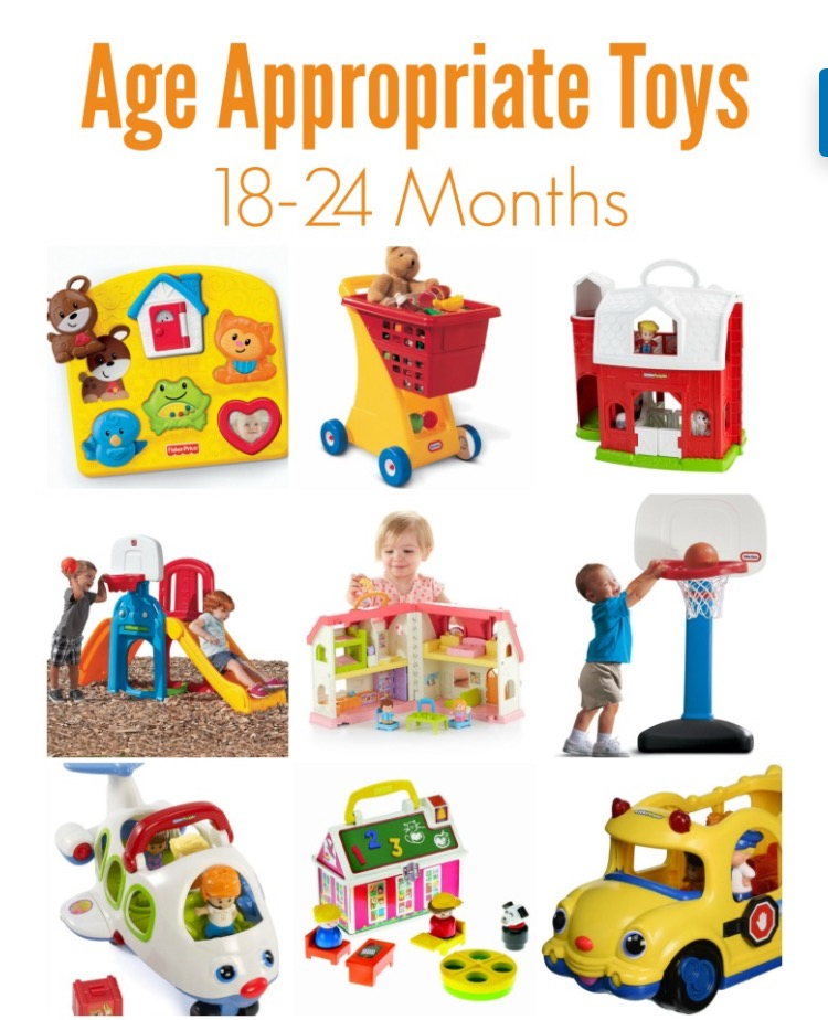 OT Activity of the Day- Toys for 18-24 Months