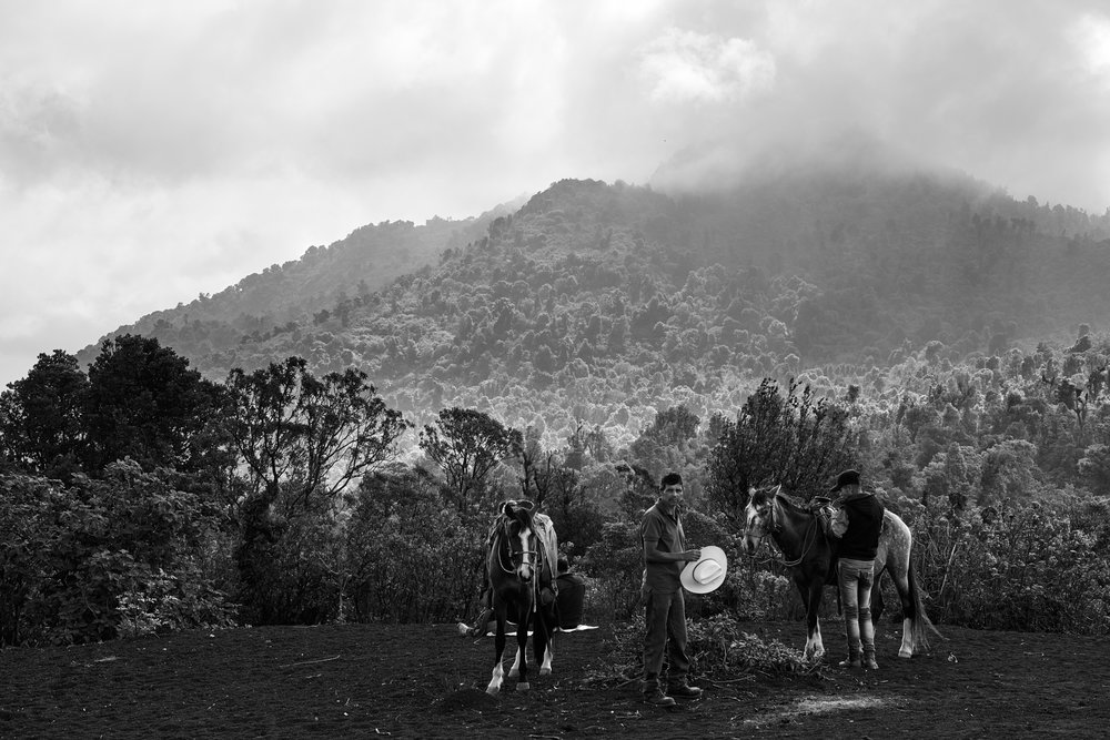 Near the Pacaya volcano, Guatemala, 2018