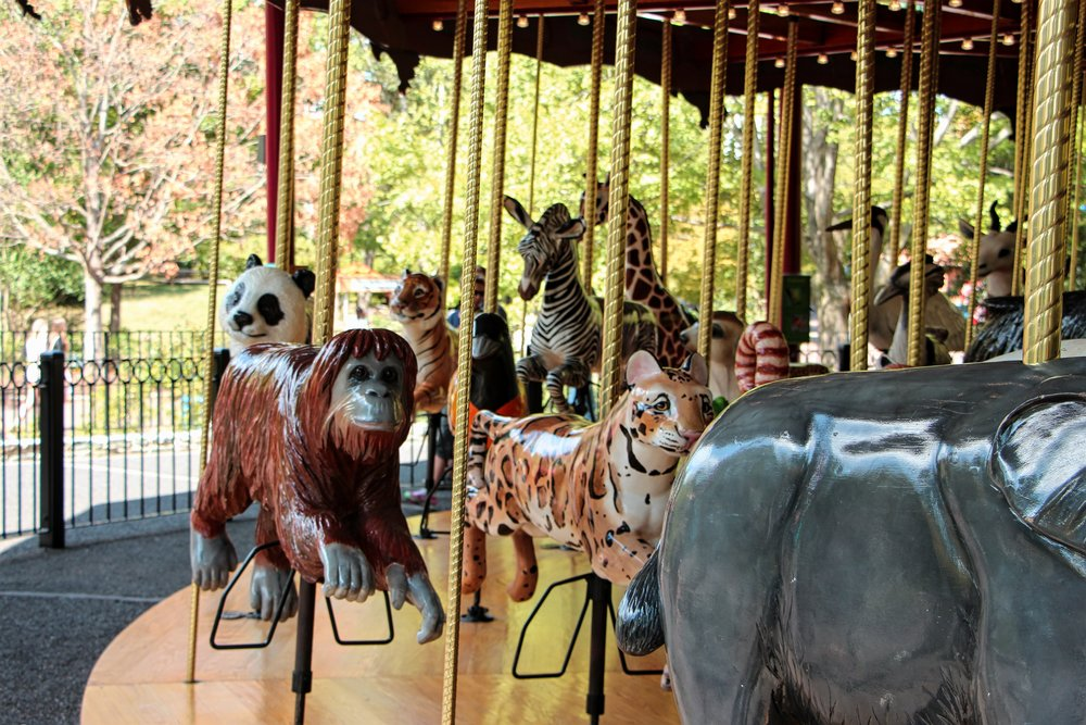 Carousel at the National Zoo