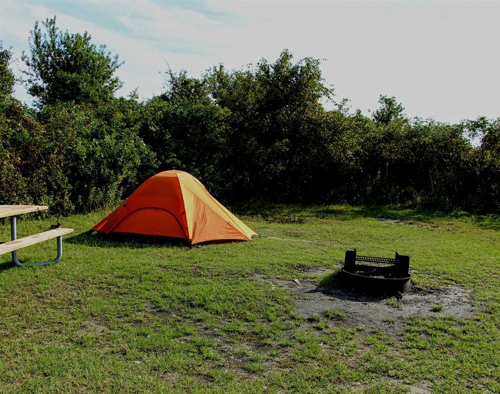Bayside Campsite - Note (Rabbit!)