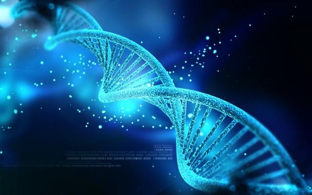 - Gene Image Courtesy of http://mappingignorance.org
