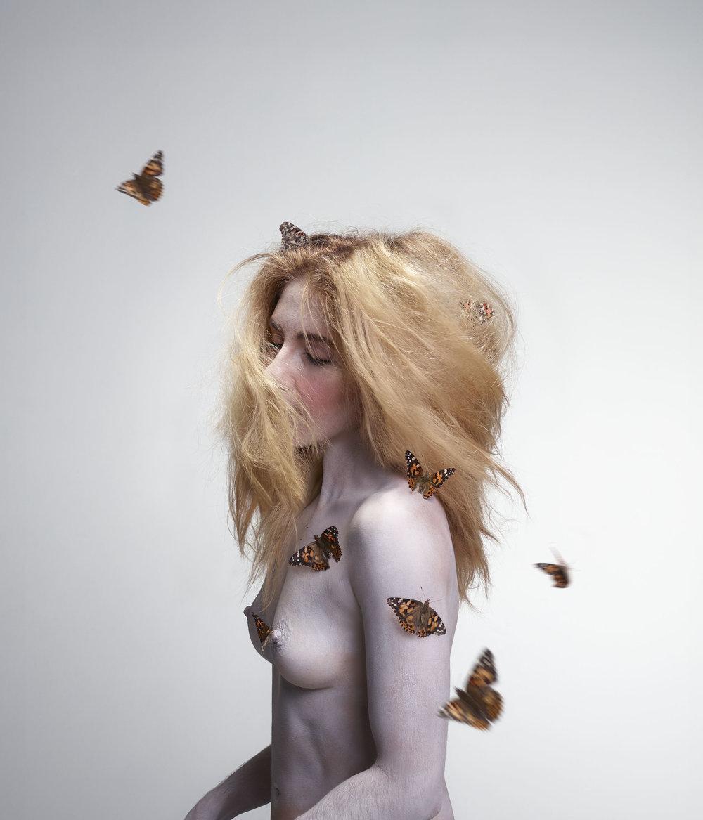 Butterfly_FINAL.jpg