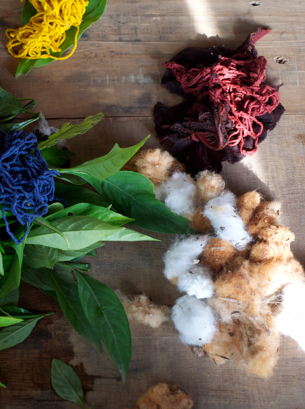 Natural Dyes, Boruca, Costa Rica