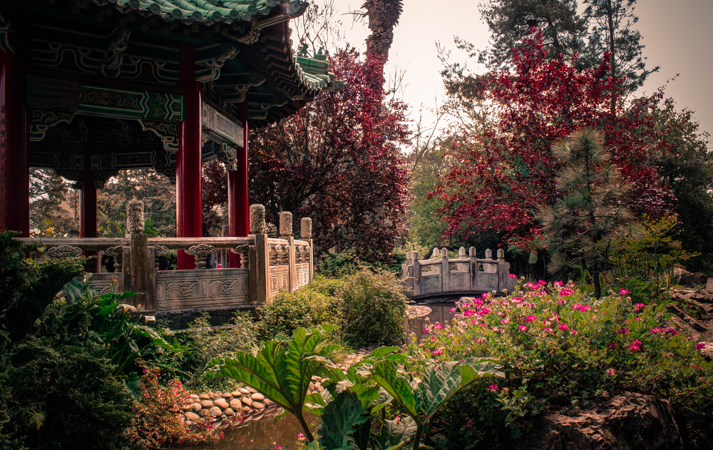 Golden Gate Park - Chinese Garden - San Francisco Travel Guide