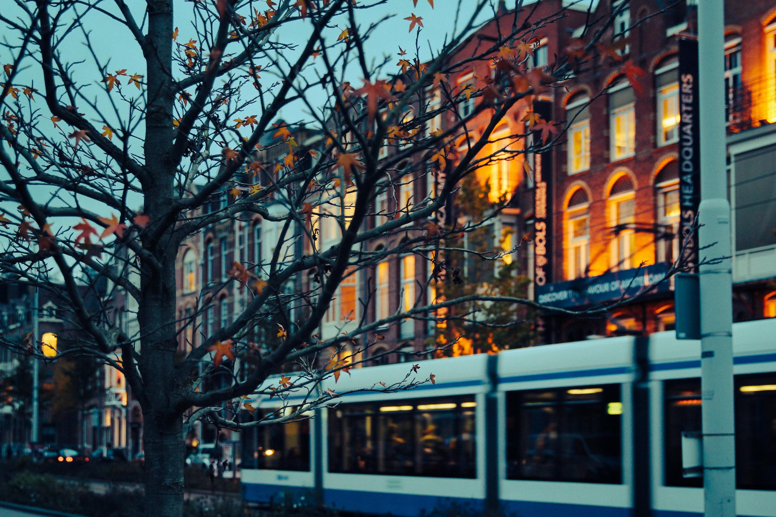 amsterdam travel guide let s go bravo