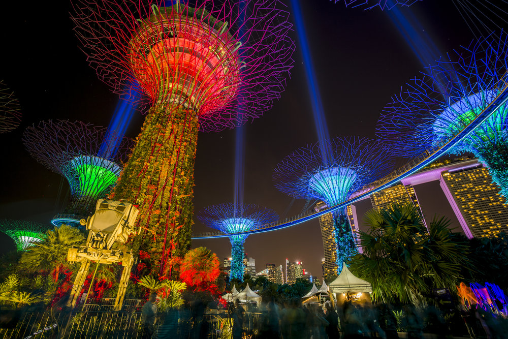 Gardens By The Bay - Let's Go Bravo - Eric Bravo Photography