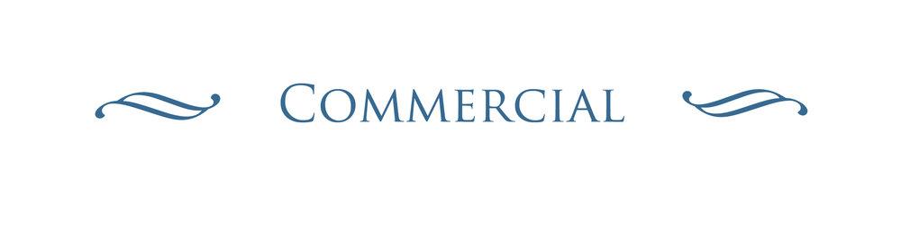 Commercial Header_blue.jpg