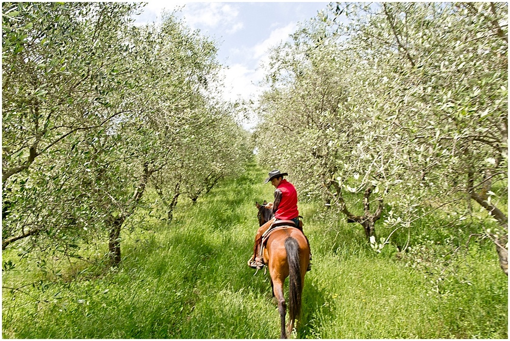 Tuscany_0012.jpg