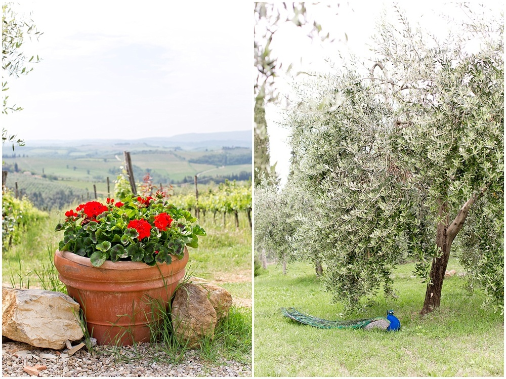 Tuscany_0046.jpg