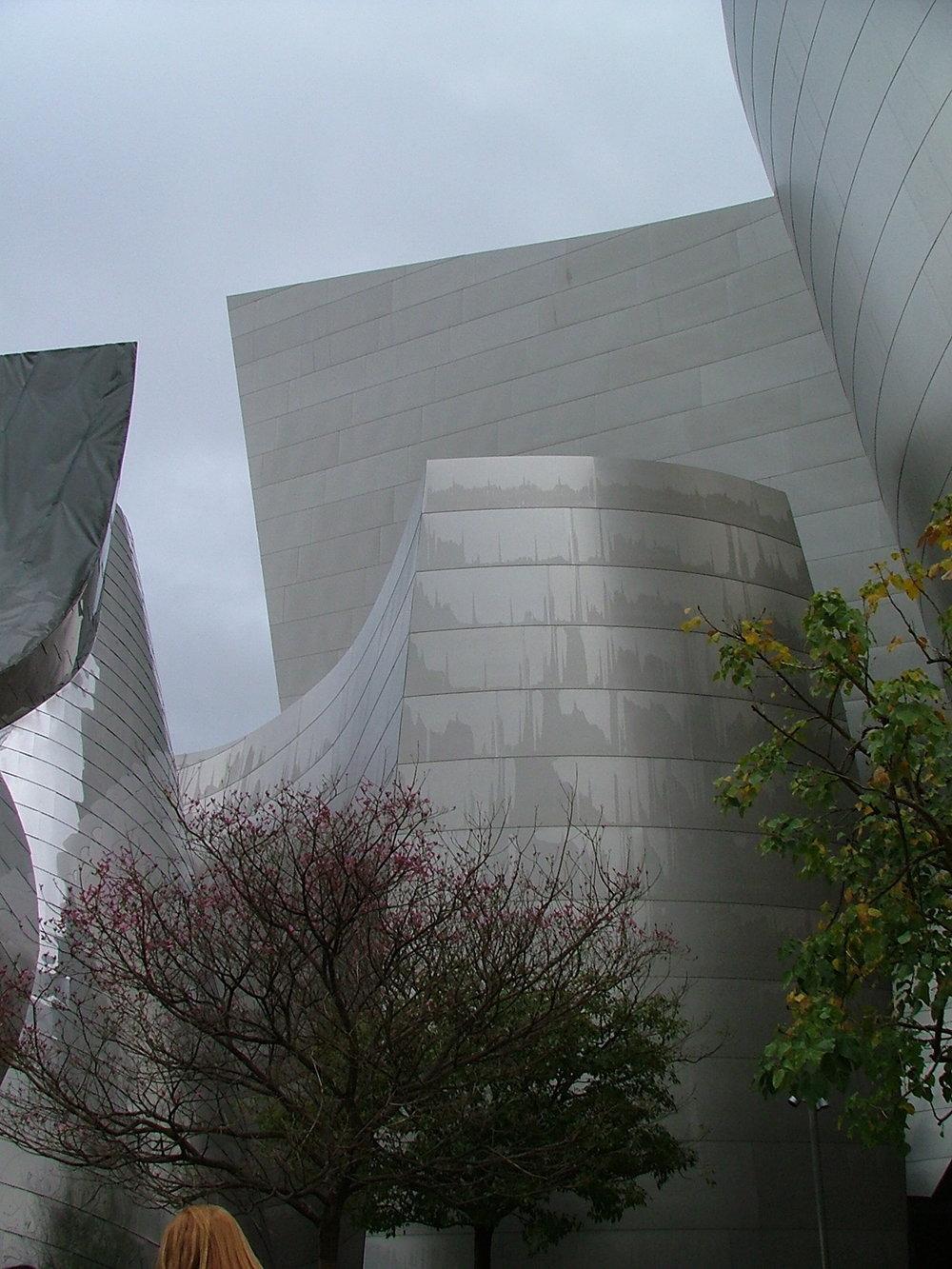 Luigia Martelloni Disney Hall