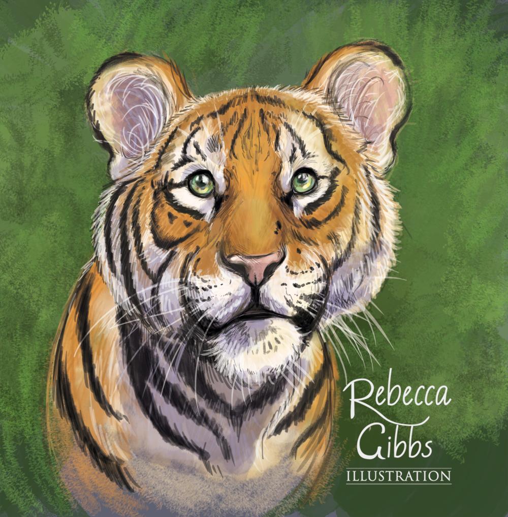 tiger cub.png