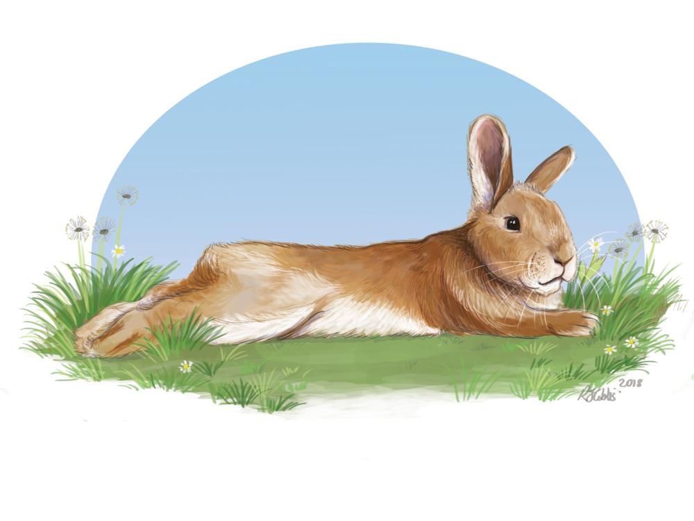 bunny memorial.png