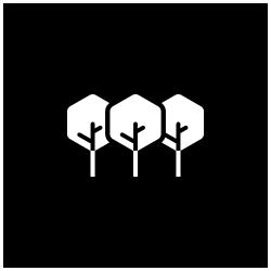Plantio Coletivo