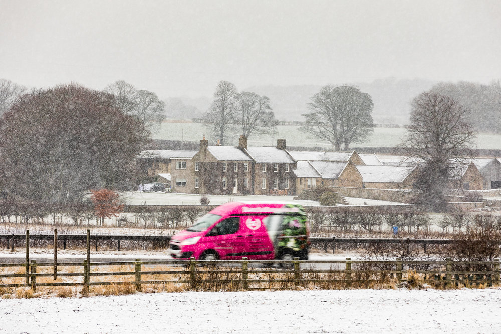 Winter - Wintry images from around North East England