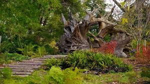 7. morris arboretum.jpg