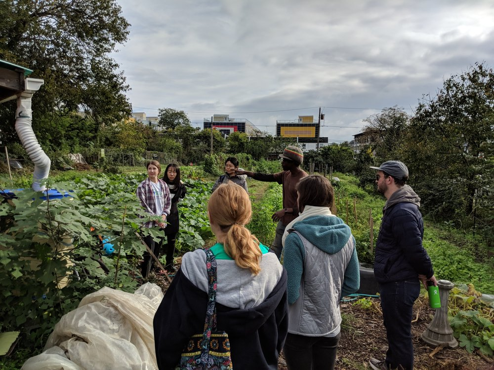 Photo from the Urban Farm Project event in October.