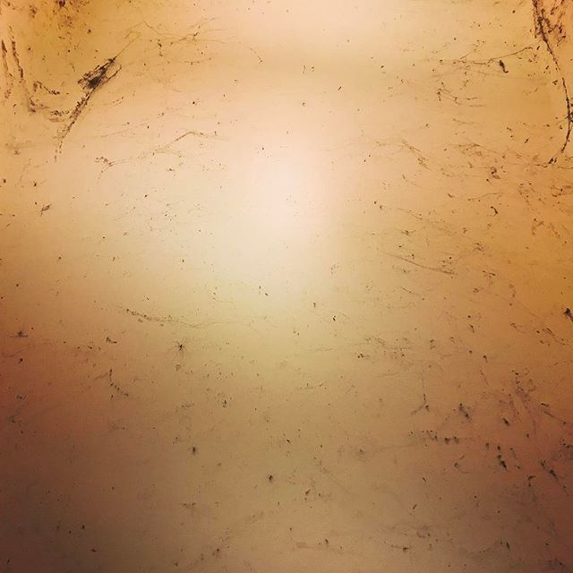 Cobwebs.  #dirty? #siders #home #neworleans #underthebridge #hangingout #weblife #arachnid #eight #web #somanylegs #legs #insect #alldayeveryday