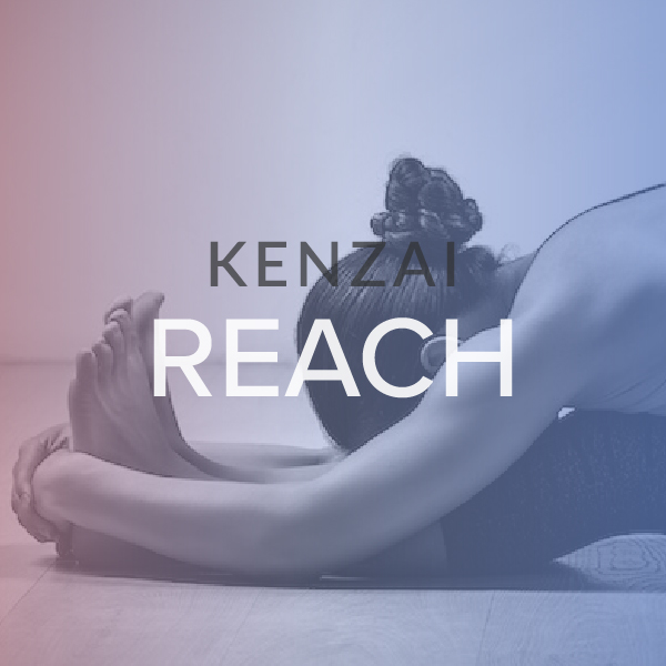 REACH Fitness is about more than body fat and abs. Flexibility and range-of-motion are key factors in how you look, feel and move. Reach combines the best of gymnastic, yoga, and martial arts methods to limber you up quickly and safely. Learn more.
