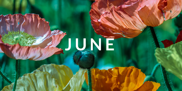 OPEN: June 5 - Sept 3