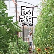 The Frost Pocket Organic Veges - Ohoka