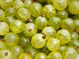 Local Gooseberry - summer