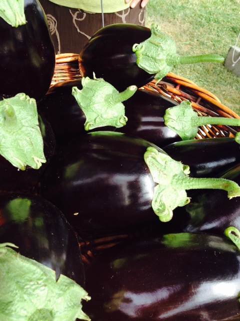 Aubergines/Eggplants - summer