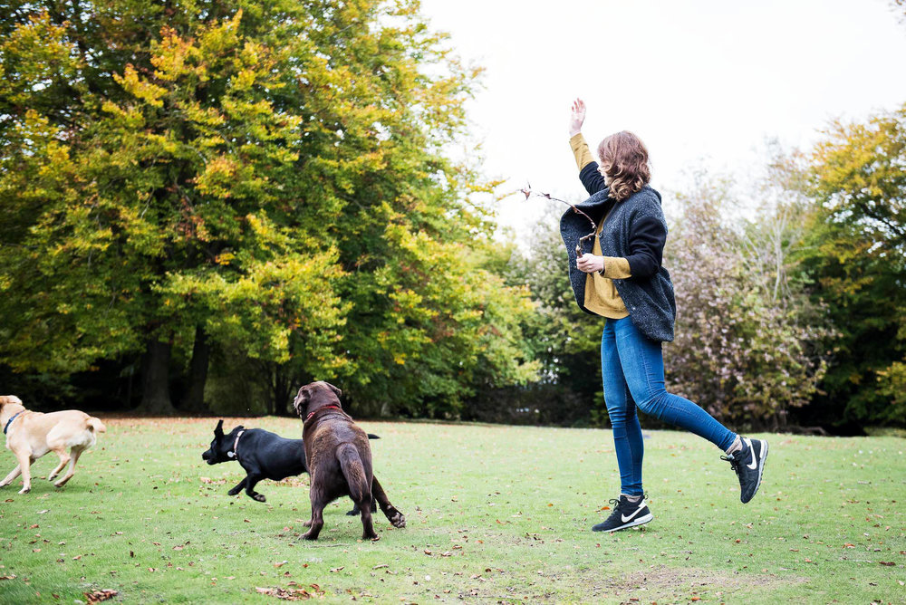 Woman Throwing Stick for Dogs.jpg