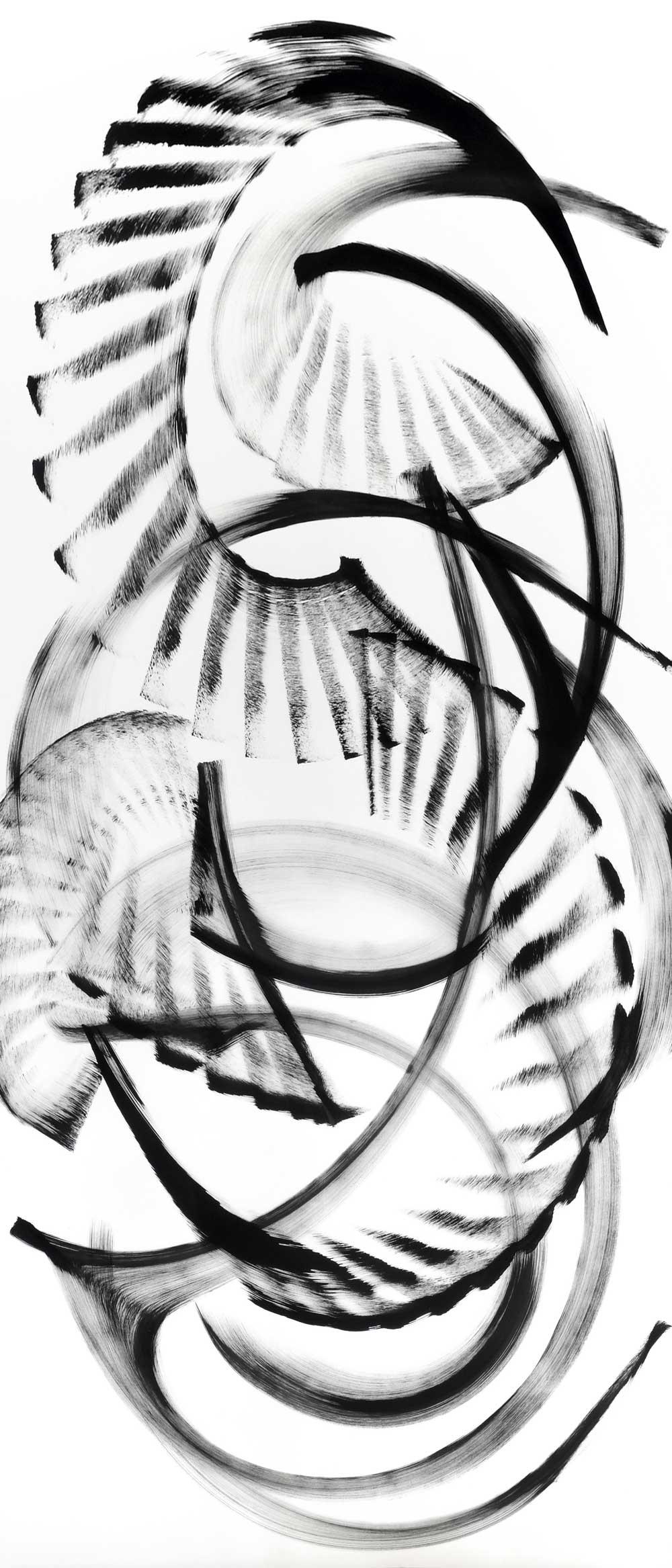 "Ochrosia-fatuhivensis, ink on paper,70""x 30"""