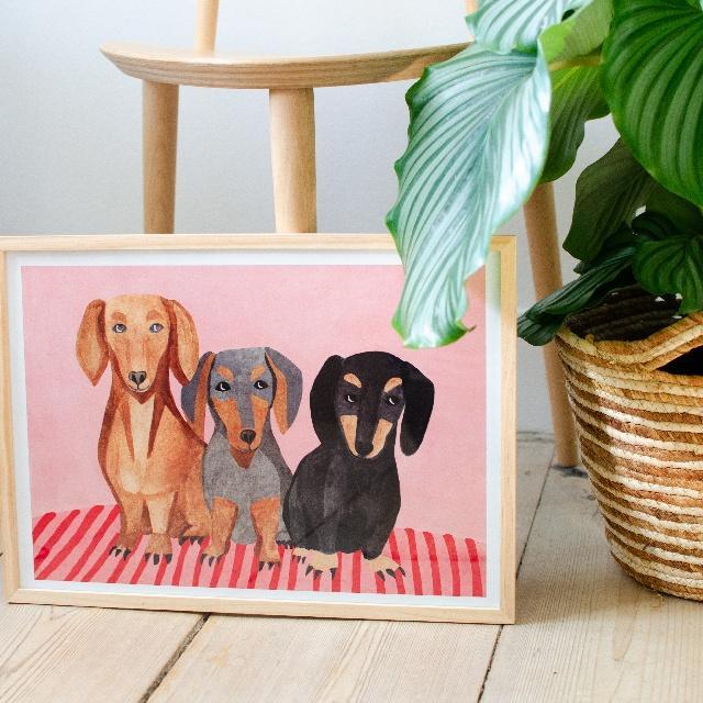 hunde maleri.jpeg