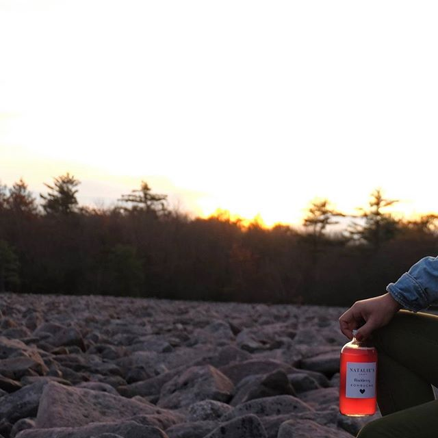 Sunsets, Booch and a Boulder Field. Mannn, these magical Pennsylvania moments 🍂🌾🌄.