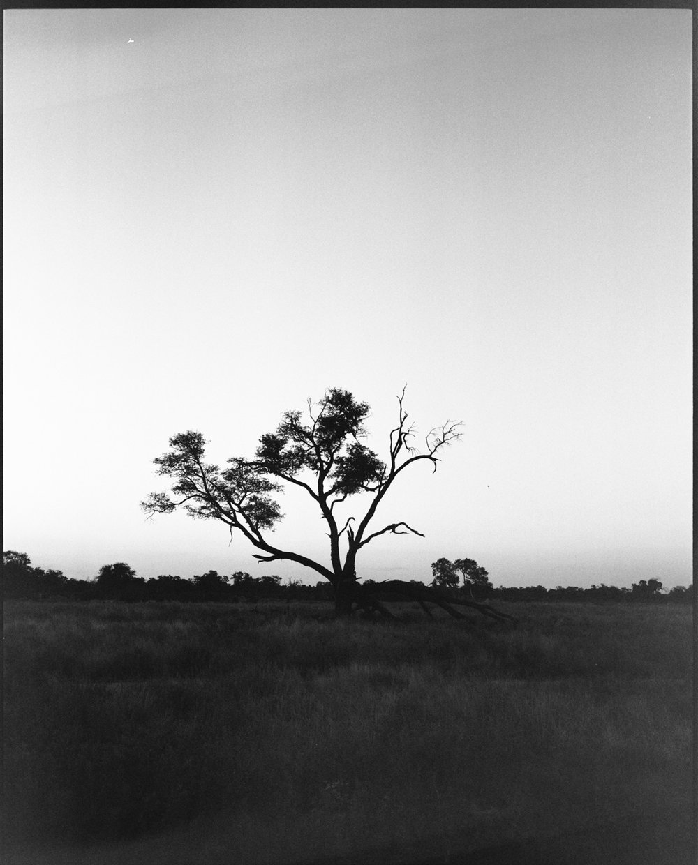 africa-10.jpg