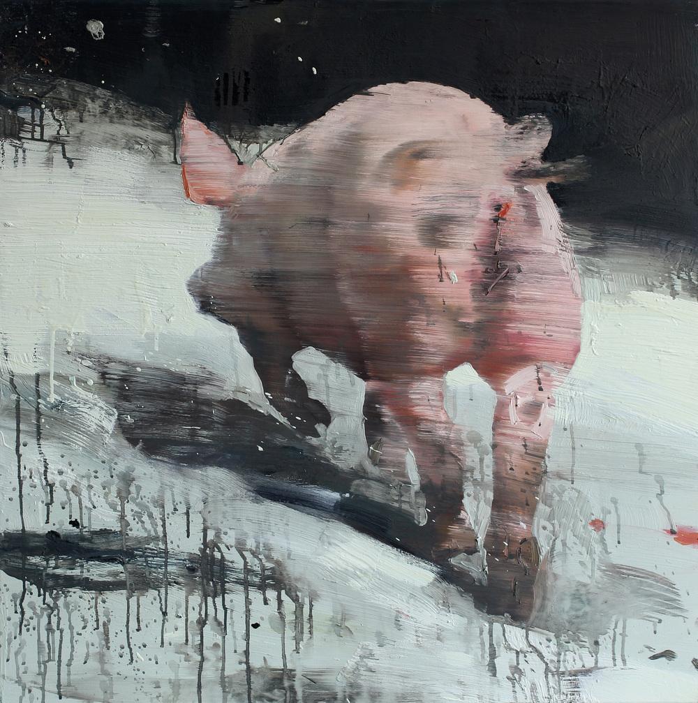 Målbevisst gris | 85x85 cm | Eggoljetempera på lerret | Privat eie