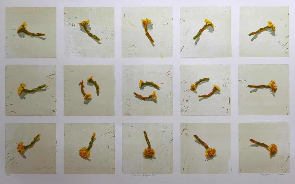 Tussilago Farfara VII | Tresnitt | 50x85 cm | kr. 3 800,-