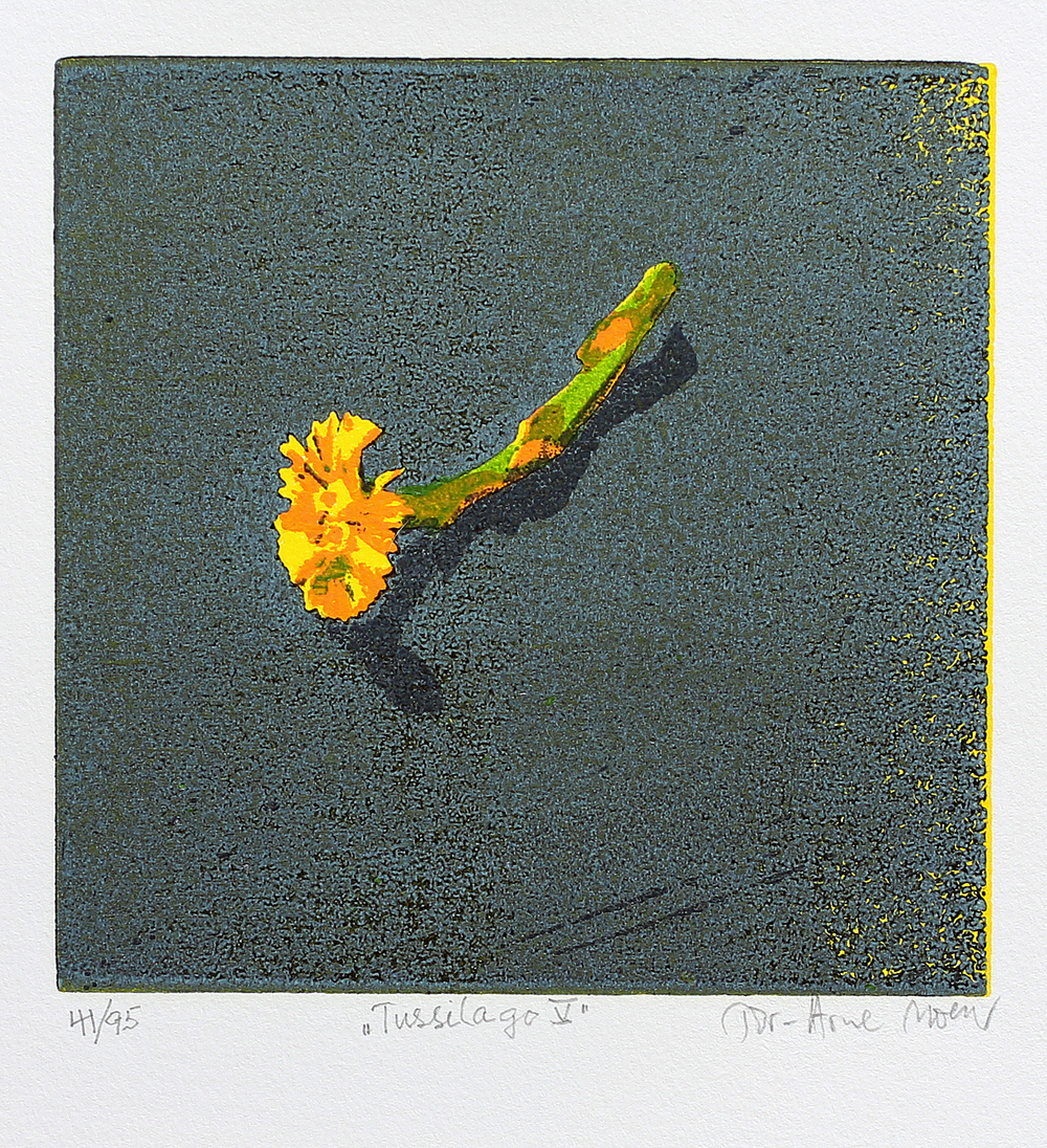 Tussilago V | Tresnitt | 15x15 cm | kr. 600,-