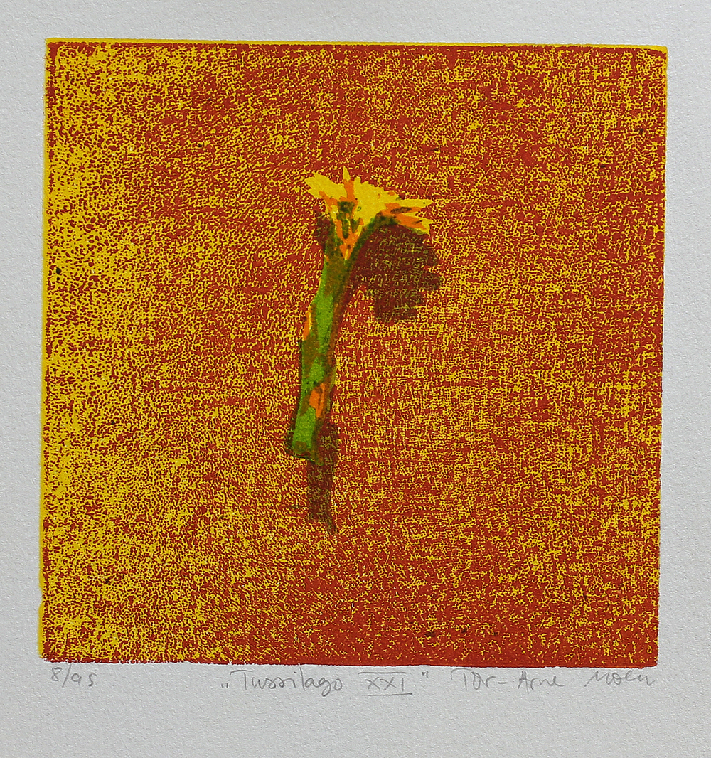 Tussilago XXI | Tresnitt | 15x15 cm | kr. 600,-