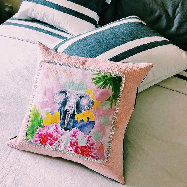 Proud Tembo Pastel Pink